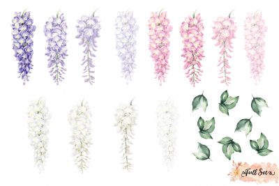 Wisteria Wall Decals – Multicolour Set