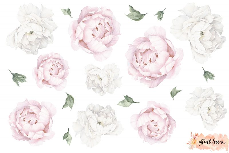 Pink and White Peony Wall Decals