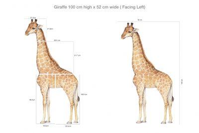 Giraffe Wall Decal Set